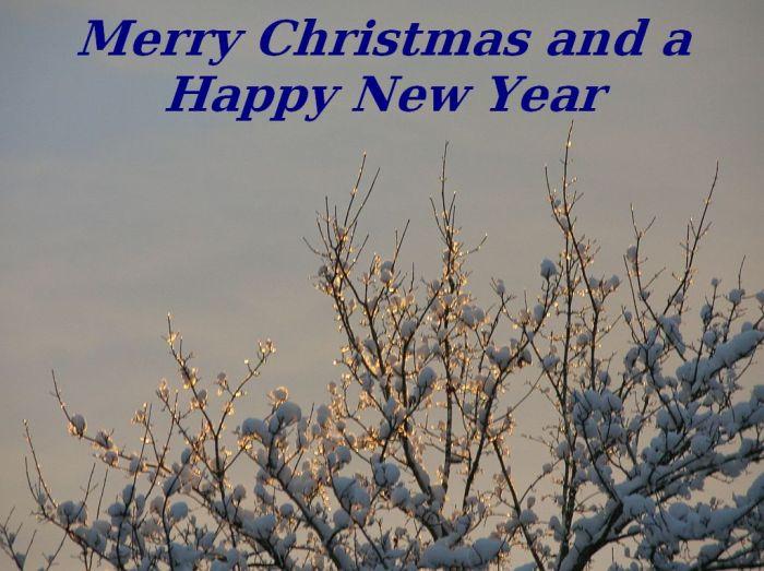 christmas-card-2006.jpg