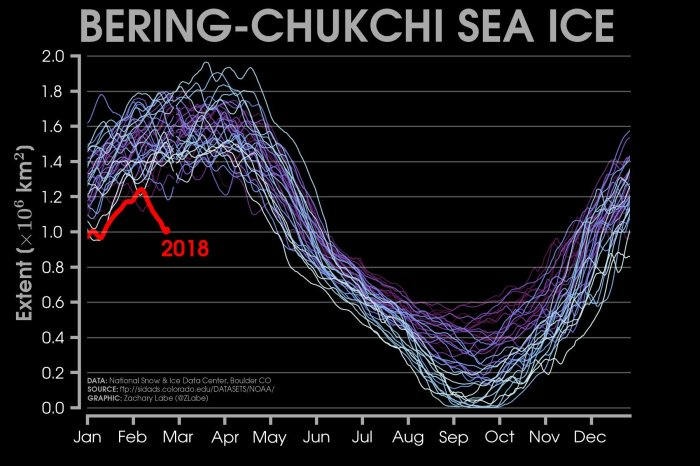 Sea Ice bering